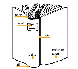 Basic book anatomy upright book