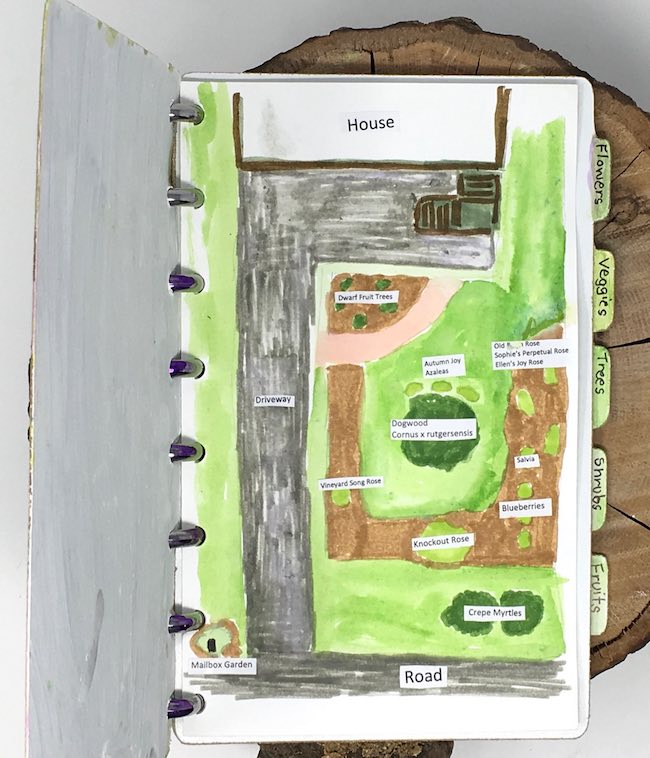 Drawing of garden layout for notebook