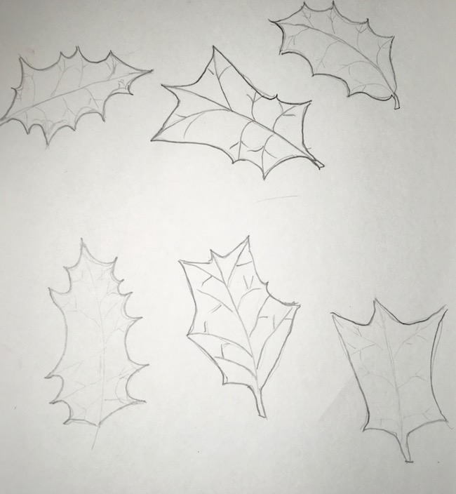 Holly leaf tracings