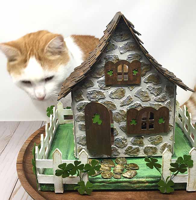 a real leprechaun trap with bill the cat on the lookout