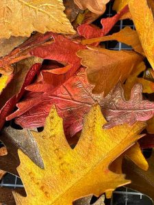 colorful fall paper leaves made with watercolor paper and spray stains