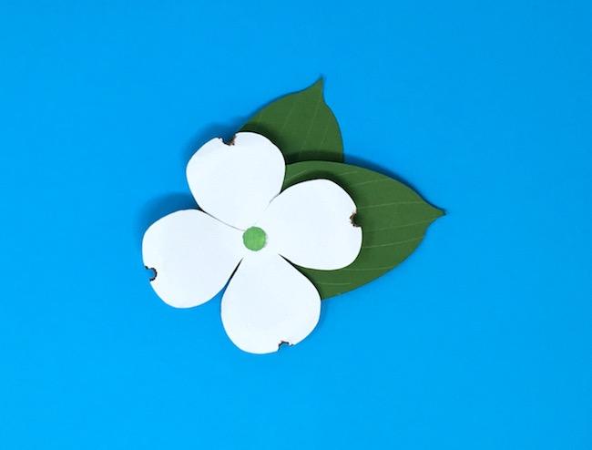simple DIY paper dogwood flower